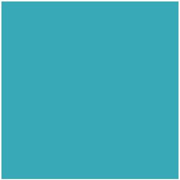 Elisabeth's Instagram